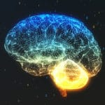 Mild brain injuries linked to long-term impact