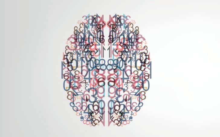 Brain mapping breakthrough