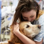 Animal therapies have genuine pedigree – study