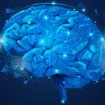 Landmark brain study could boost MS treatment development