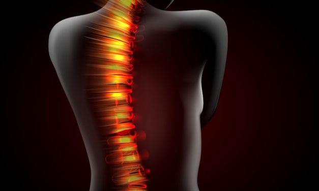 Injection boosts spinal cord injury repair