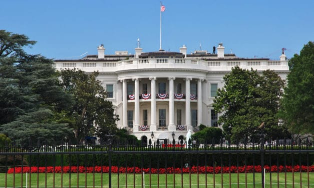 White House petition on concussion launched